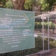 Közösségi tervezés a Ferenc téren?